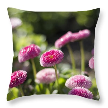 Glittering Daisies Throw Pillow