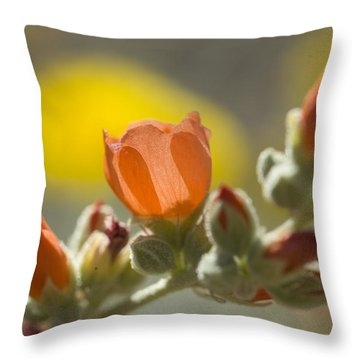 Globe Mallow Glow Throw Pillow by Sue Cullumber