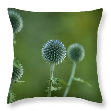 Globe Thistles Echinops Throw Pillow