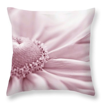 Gloriosa Daisy In Pink  Throw Pillow by Sandra Foster