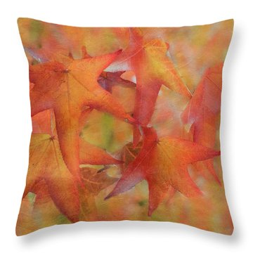 Throw Pillow featuring the photograph Glorious Autumn by Angie Vogel