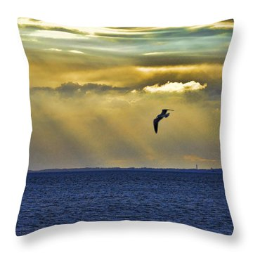 Throw Pillow featuring the photograph Glorious Evening by Jan Amiss Photography