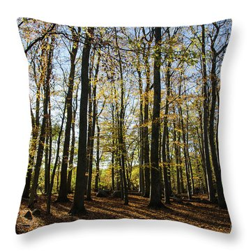 Throw Pillow featuring the photograph Glorious Forest by Kennerth and Birgitta Kullman