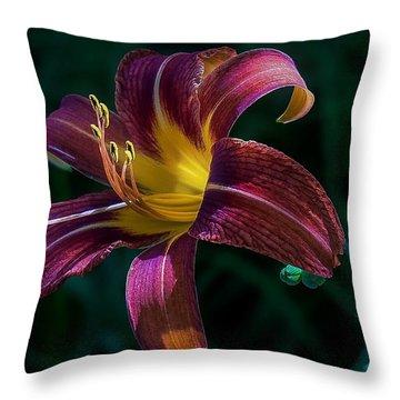 Glorious Throw Pillow