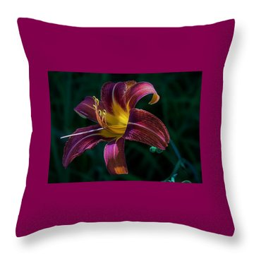 Throw Pillow featuring the photograph Glorious by Kendall McKernon