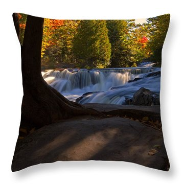 Throw Pillow featuring the photograph Glorious Morning by Heather Kenward