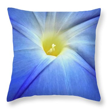 Glorious Morning Throw Pillow