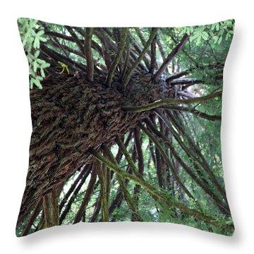 Glorious Tree  Throw Pillow