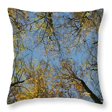 Throw Pillow featuring the photograph Glorious Tree Tops by Kennerth and Birgitta Kullman