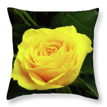 Glorious Yellow Rose Throw Pillow