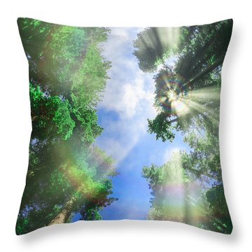 Glory Amongst Redwoods Throw Pillow