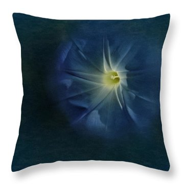Throw Pillow featuring the photograph Glory Be by Richard Cummings