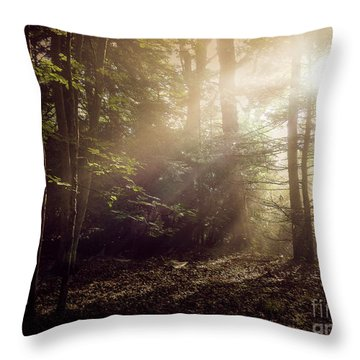 Glory Comin Down Throw Pillow by Brenda Bostic