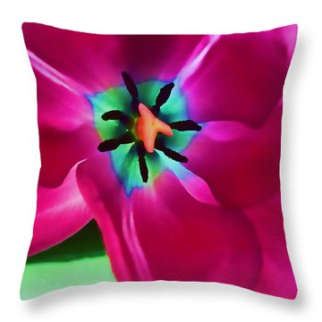 Throw Pillow featuring the photograph Glory Hallelujah by Roberta Byram