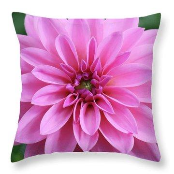 Glory Of The Garden Throw Pillow