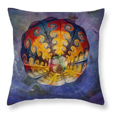 Glory Of The Sky Throw Pillow
