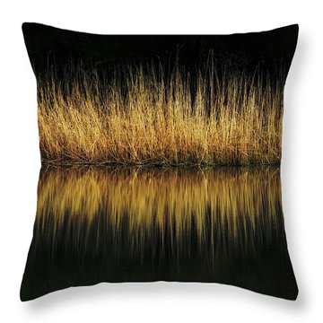 Glow And Reflections At Lakes Edge Throw Pillow