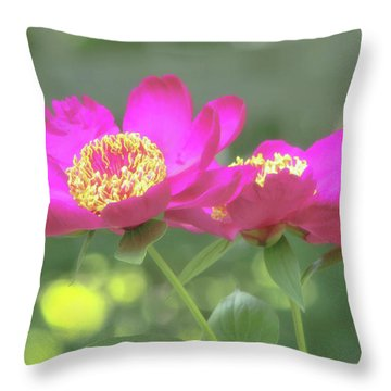 Throw Pillow featuring the photograph Glow Blossoms by Deborah  Crew-Johnson