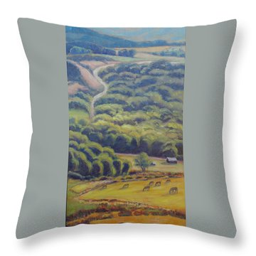 Glow Of The Rising Sun Throw Pillow
