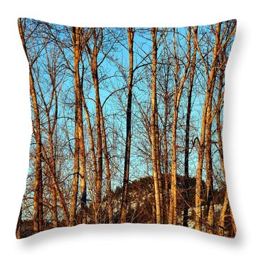 Throw Pillow featuring the photograph Glow Of The Setting Sun by Will Borden