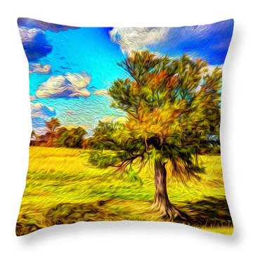 Glowing Afternoon Throw Pillow