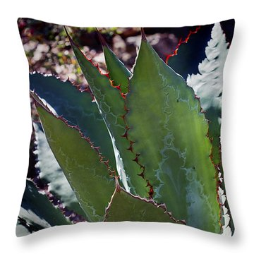Throw Pillow featuring the photograph Glowing Agave by Phyllis Denton
