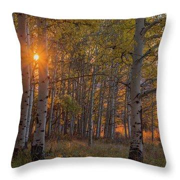 Glowing Aspen, La Sal Mountains Throw Pillow