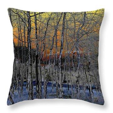 Glowing Aspens At Dusk Throw Pillow