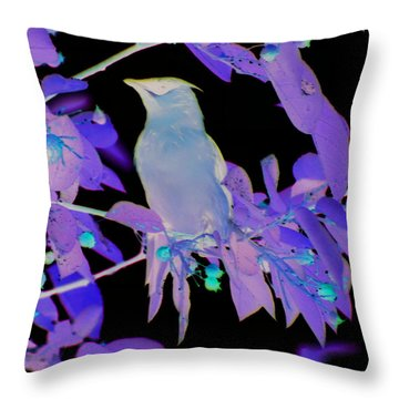 Glowing Cedar Waxwing Throw Pillow