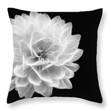 Throw Pillow featuring the photograph Glowing Dahlia by Louise Lindsay
