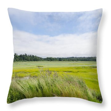 Glowing Fields Throw Pillow