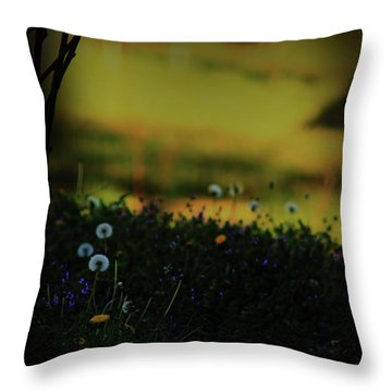 Throw Pillow featuring the photograph Glowing by Kim Henderson