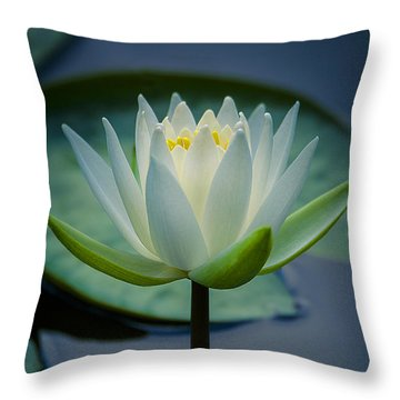 Glowing Lily Throw Pillow