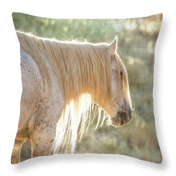 Glowing Throw Pillow by Mary Hone