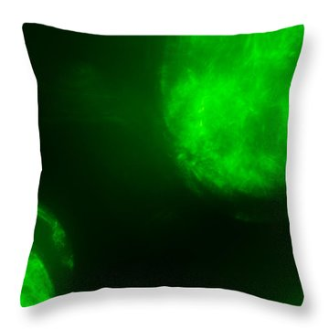 Throw Pillow featuring the photograph Glowing Orbs by Greg Collins