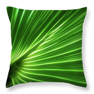 Throw Pillow featuring the photograph Glowing Palm by Louise Lindsay