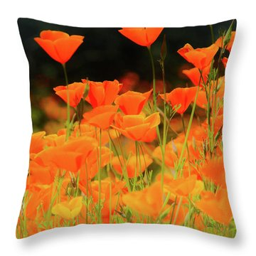 Glowing Poppies Throw Pillow