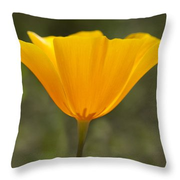 Glowing Poppy Throw Pillow by Elvira Butler