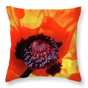 Eye Popping Oriental Poppy - Images From The Garden Throw Pillow