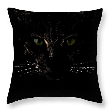 Glowing Whiskers Throw Pillow by Helga Novelli