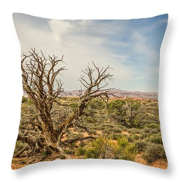 Gnarled Juniper Tree In Arches Throw Pillow