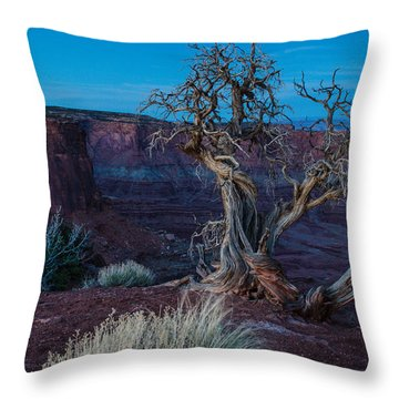 Gnarled Throw Pillow