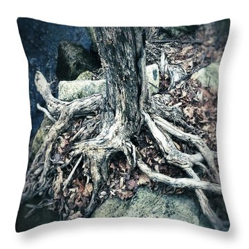Gnarled Rooted Beauty Throw Pillow by Jason Nicholas