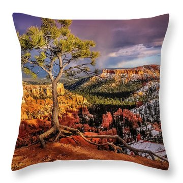 Gnarled Tree At Bryce Canyon Throw Pillow