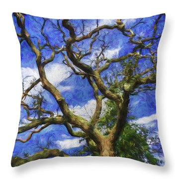 Starry Afternoon Throw Pillow