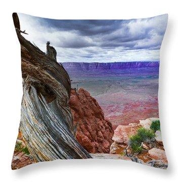 Gnarly Desert Throw Pillow