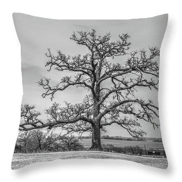 Gnarly Nature Throw Pillow