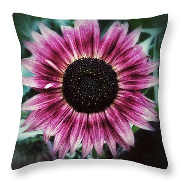 Go Pink Throw Pillow by Karen Stahlros