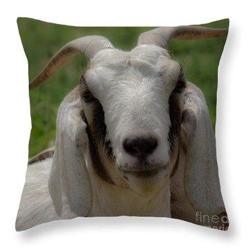 Goat 1 Throw Pillow