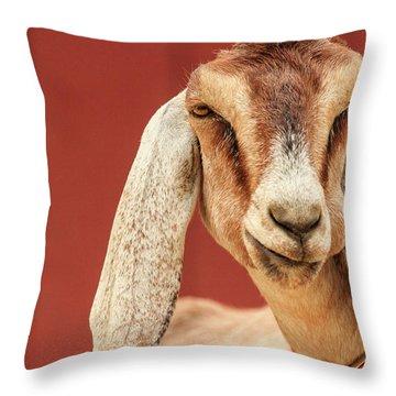Goat With An Attitude Throw Pillow